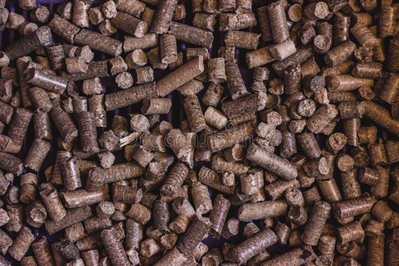 Des toilettes pour des animaux familiers, pin en bois de remplisseur est employées dans la poubelle Un grand choix de sciure pres photographie stock