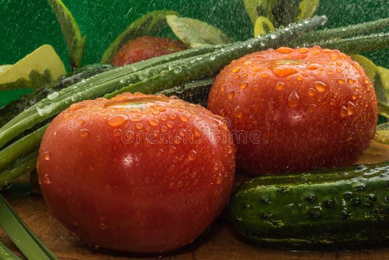 Des tomates rouges mûres, concombres verts, des plumes d'oignon vert sont couvertes de grandes gouttes de l'eau image libre de droits