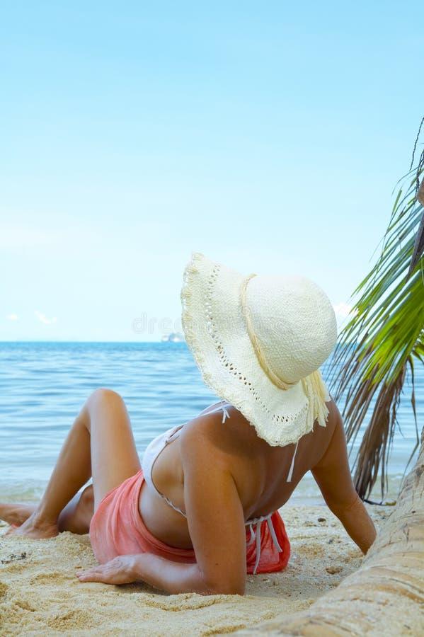 Des vacances photo stock
