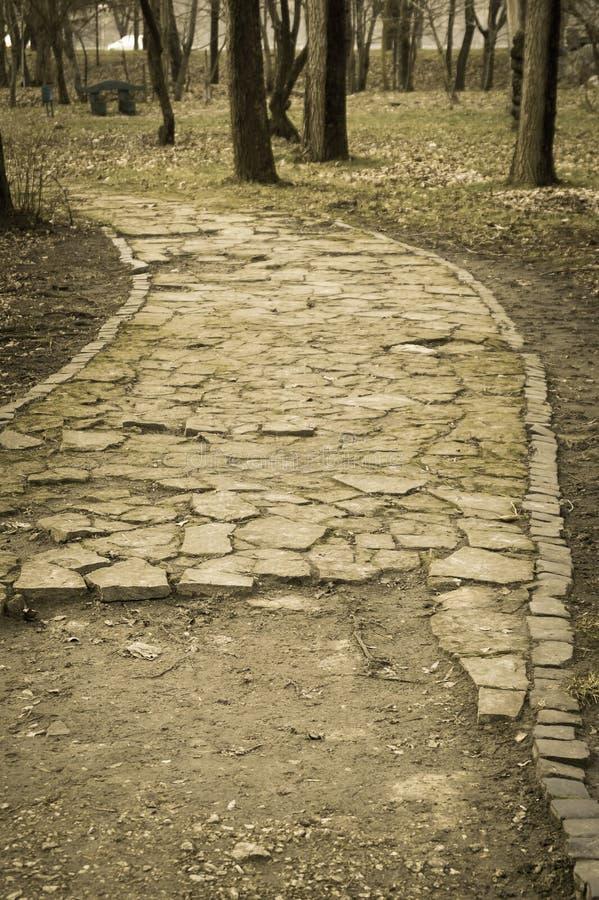 Des voies en parc sont pavées avec la pierre image libre de droits