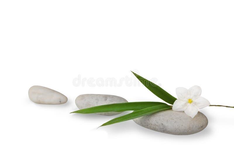 Des Wellness Leben noch, Blätter des Bambusses und Jasmin stockbilder