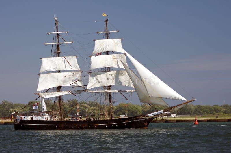 Desafio alto 2010 dos navios - Roald Amundsen foto de stock royalty free
