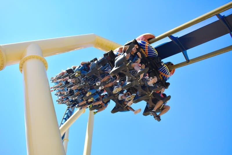 Desafio de surpresa no roller coaster de Montu no parque temático de Tampa Bay dos jardins de Bush foto de stock royalty free