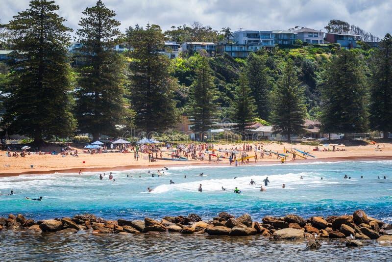 Desafio local do esporte na praia de Avoca, Austrália foto de stock royalty free