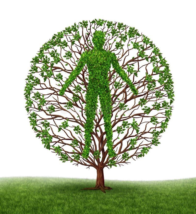 Desarrollo humano ilustración del vector