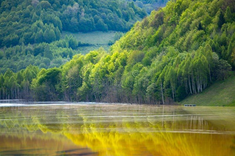 Desastre ecológico: contaminación del cianuro en el lago Geamana cerca de Rosia Montana, Rumania fotografía de archivo