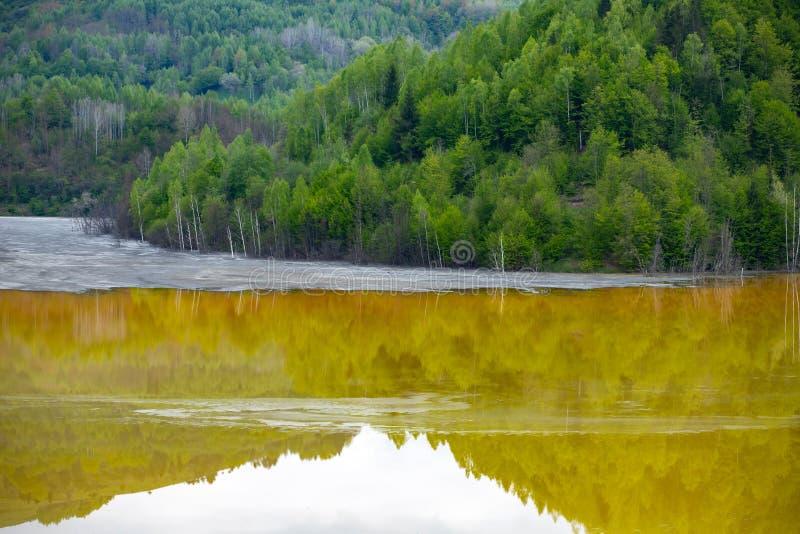 Desastre ecol?gico: contaminaci?n del cianuro en el lago Geamana cerca de Rosia Montana, Rumania fotos de archivo libres de regalías