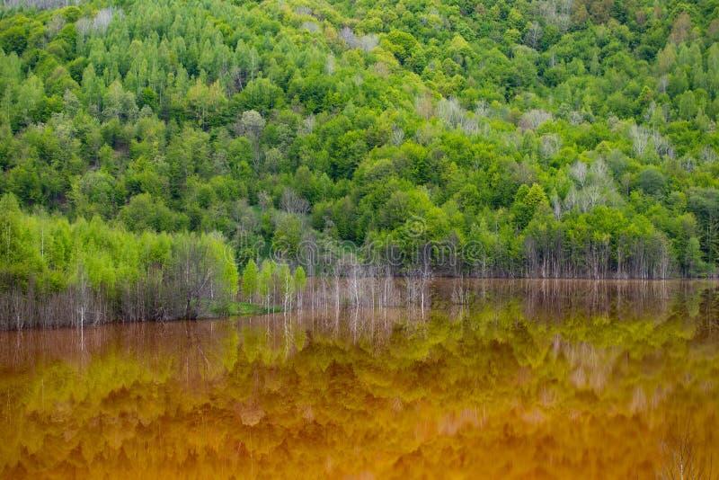 Desastre ecol?gico: contaminaci?n del cianuro en el lago Geamana cerca de Rosia Montana, Rumania imagenes de archivo