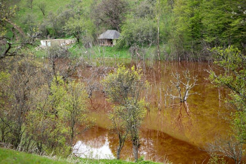 Desastre ecol?gico: contaminaci?n del cianuro en el lago Geamana cerca de Rosia Montana, Rumania foto de archivo libre de regalías