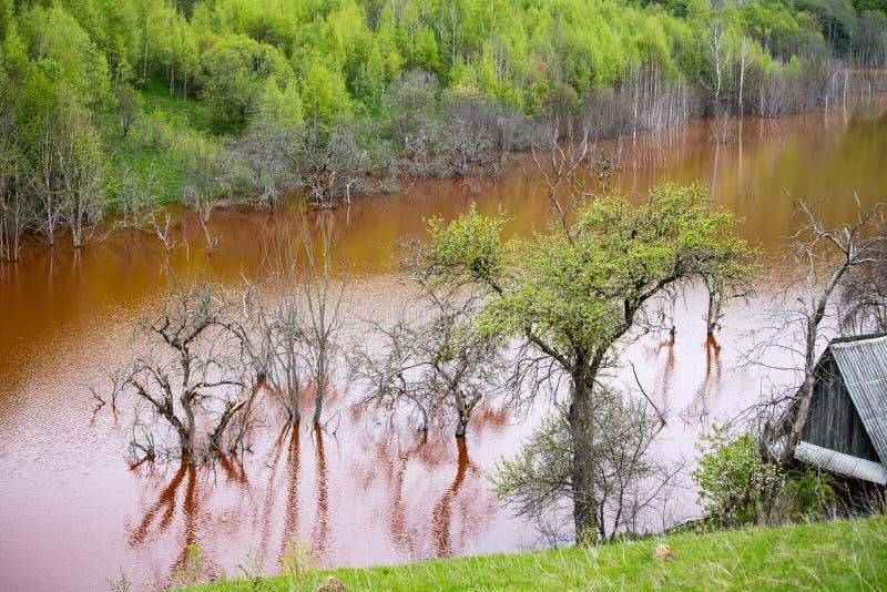 Desastre ecol?gico: contaminaci?n del cianuro en el lago Geamana cerca de Rosia Montana, Rumania imagen de archivo libre de regalías