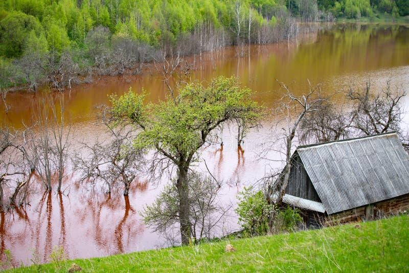 Desastre ecol?gico: contaminaci?n del cianuro en el lago Geamana cerca de Rosia Montana, Rumania fotografía de archivo libre de regalías