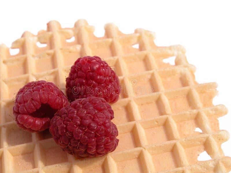 Download Desayuno imagen de archivo. Imagen de gordo, tortas, frambuesa - 175465