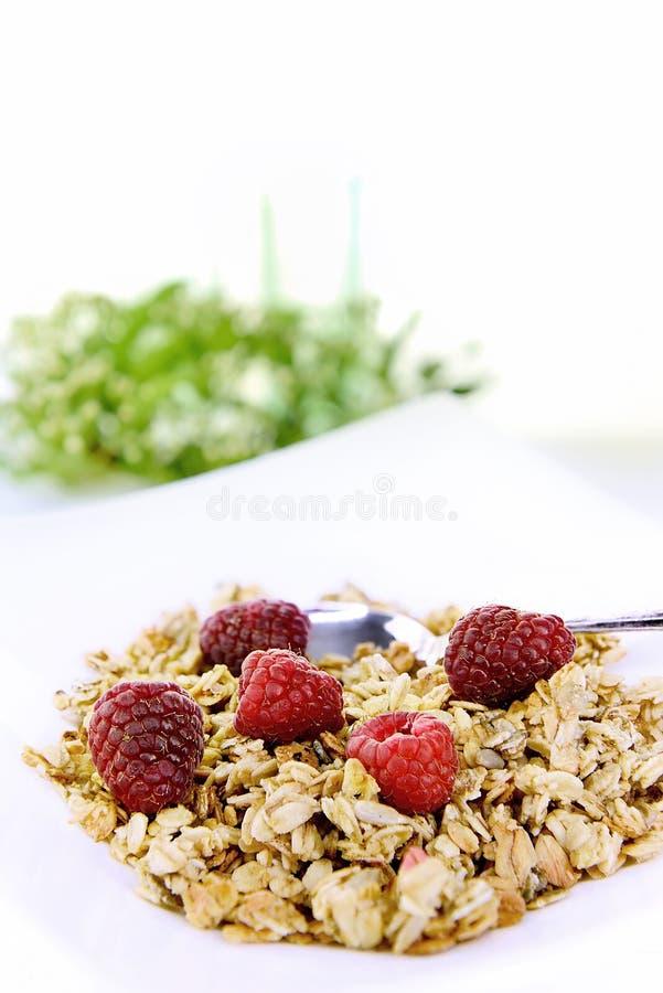 Desayuno crujiente del Granola de la avena foto de archivo