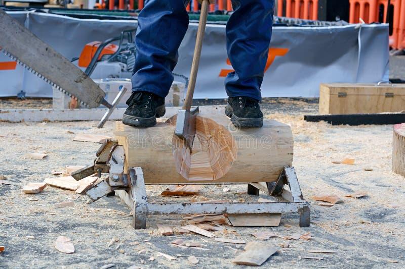 Desbastamento de madeira foto de stock royalty free