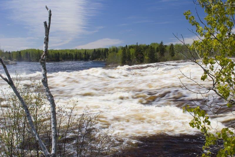 Desbordamiento del río del derretimiento de la primavera imágenes de archivo libres de regalías