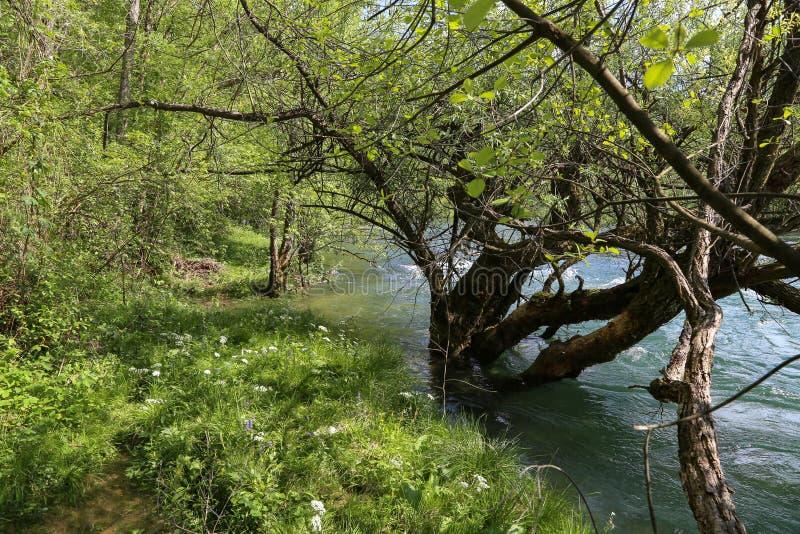 Desbordamiento en el río foto de archivo libre de regalías