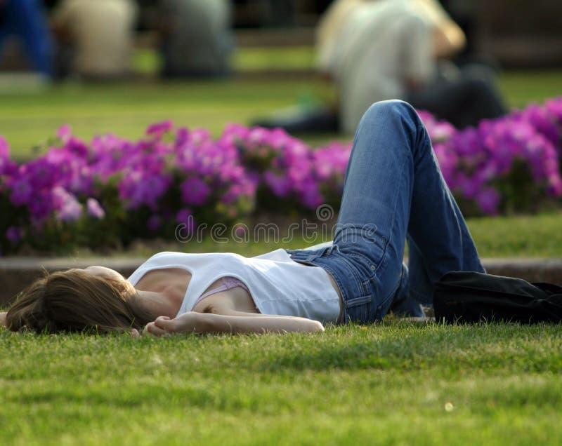 Descanso em um gramado foto de stock royalty free