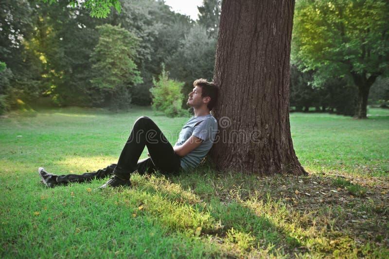 Descanso no parque imagem de stock