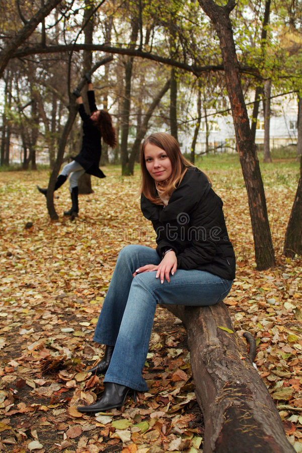 Descanso no parque do outono foto de stock