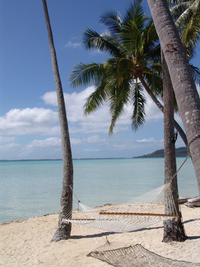 Descanso polinésio foto de stock royalty free