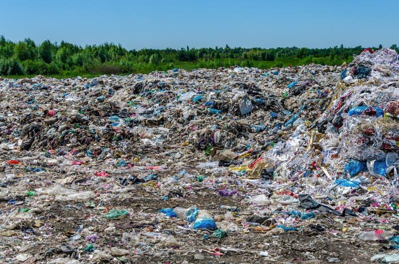 Descarga de basura en bosque foto de archivo libre de regalías