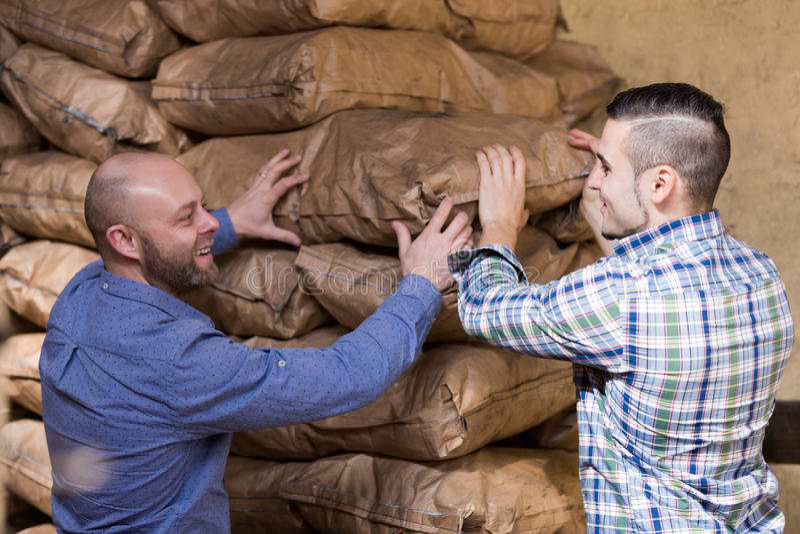 Descarga de los trabajadores vertida con los bolsos del carbón imagen de archivo libre de regalías
