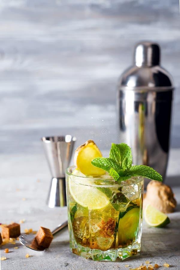 Descaroce o cocktail do tônico com gengibre, pepino e hortelã fotos de stock