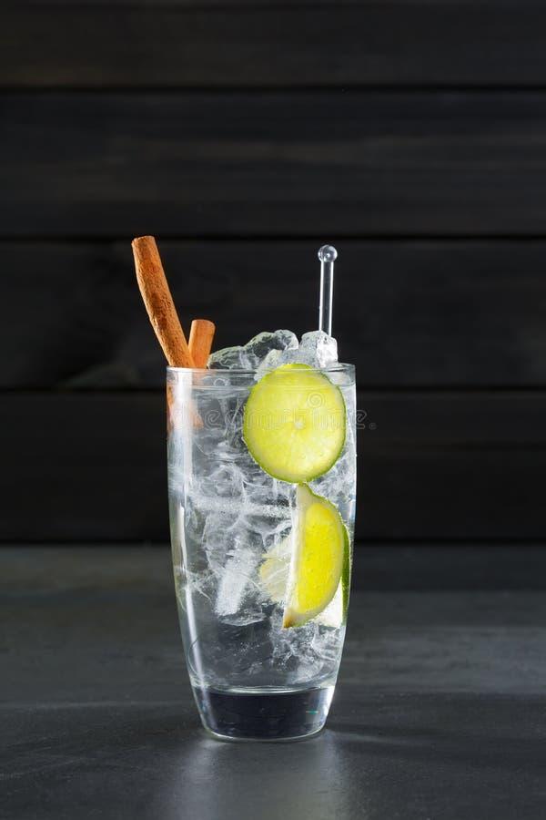 Descaroce o cocktail do tônico com canela de Lima e cubo de gelo no preto fotografia de stock royalty free