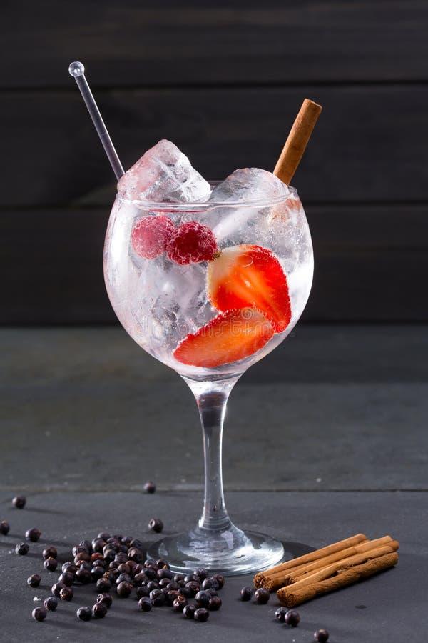 Descaroce o cocktail do tônico com canela e zimbro das morangos foto de stock royalty free