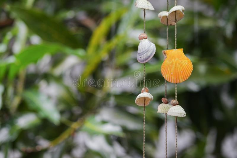 Descasca a decoração de suspensão no jardim, o shell colorido imagem de stock royalty free