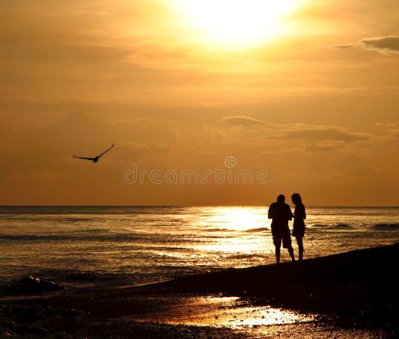 Descascamento no por do sol em Sanibel fotografia de stock royalty free