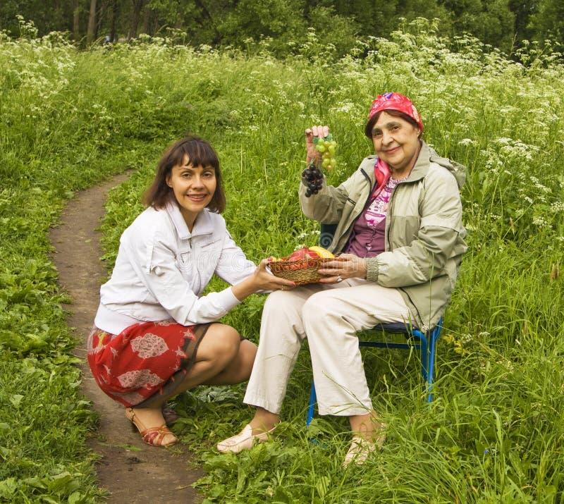 Descendant et mère sur le pique-nique photo stock