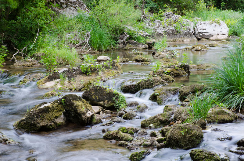 Descendeur de rivière de Moravica image libre de droits