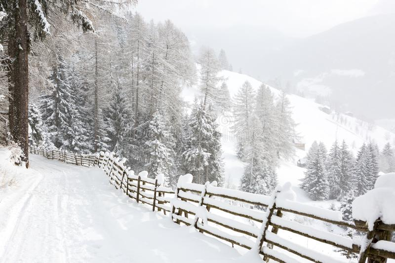 Descending winding country road with the scenic view in the mountains during snowfall   near Sterzing/ Vipiteno South Tyrol, Dol. Omites,  northern Italy stock photos