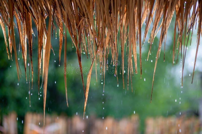 descenso del agua que baja del tejado de la paja, lloviendo el fondo Día feliz foto de archivo libre de regalías