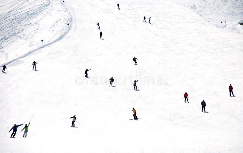 Descente de masse des skieurs de montagne de flanc de coteau photo stock