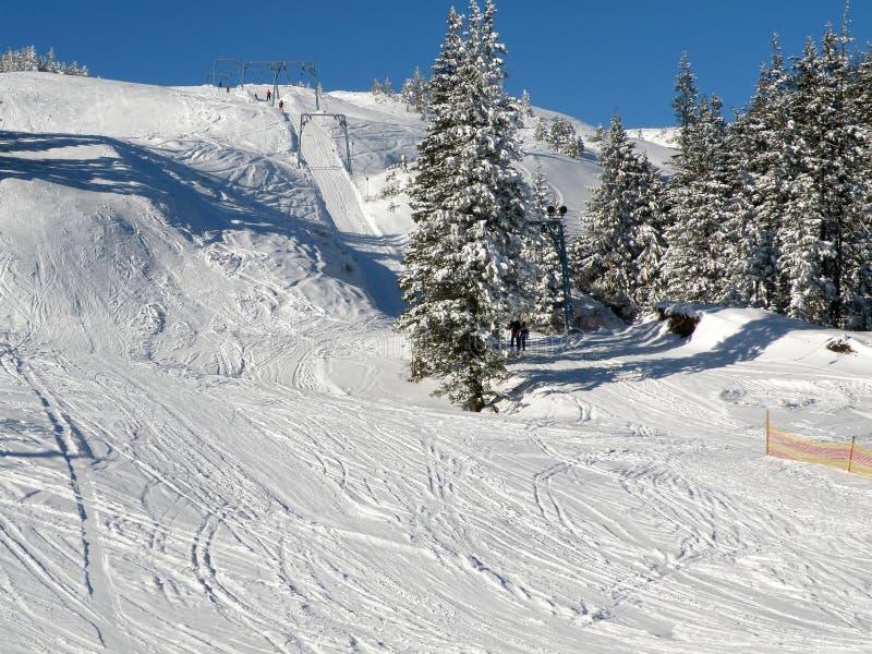 Descente de ski photo libre de droits