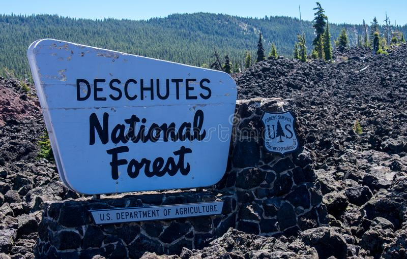 Deschutes National Forest royalty free stock photos