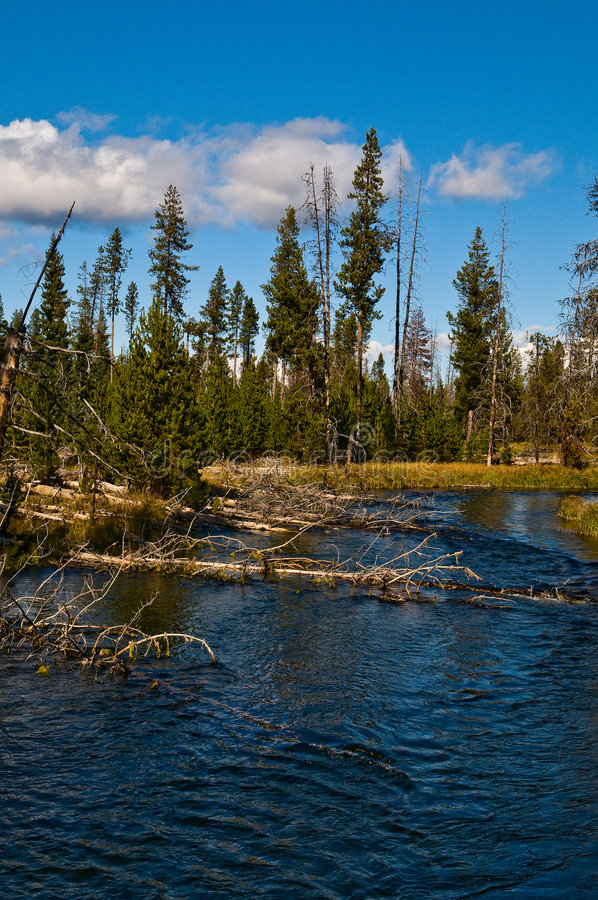 Download The Deschutes River Stock Photo - Image: 7343140