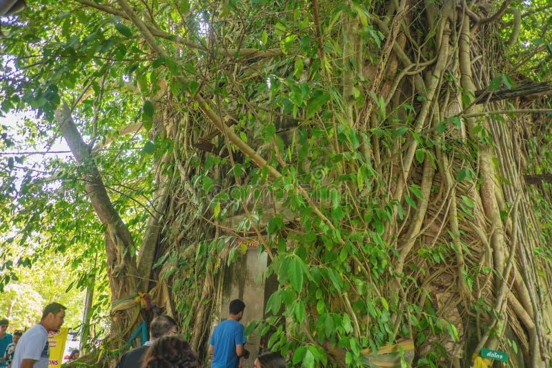 Desconhecidos tailandeses e turistas visitam o templo Wat bang kung no Samut Songkhram Tailândia fotografia de stock