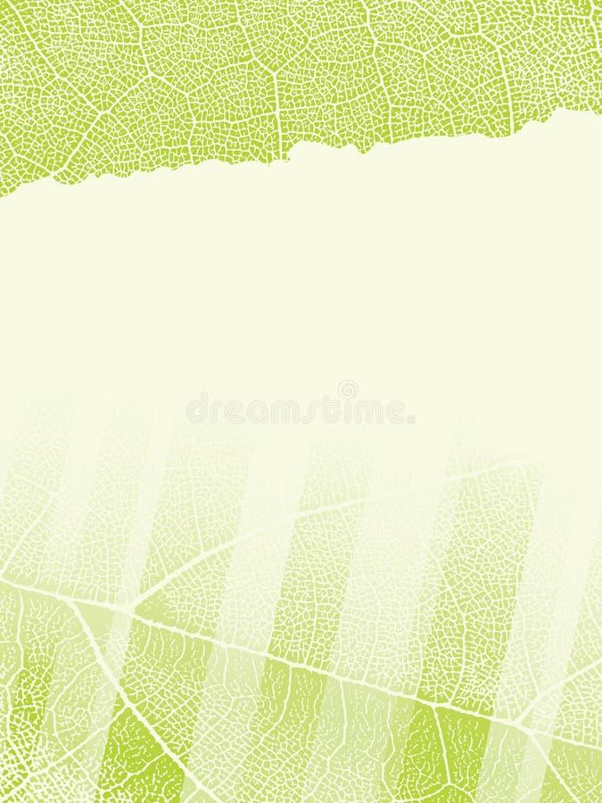 Descripteur avec la texture de lame illustration libre de droits