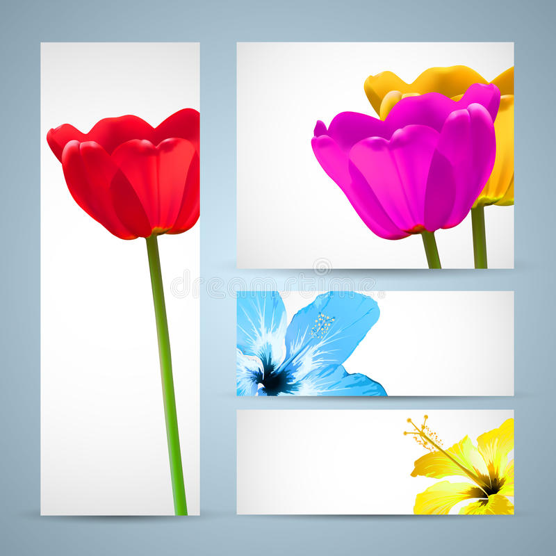 Descripteur de nature de brochure de fleur illustration stock