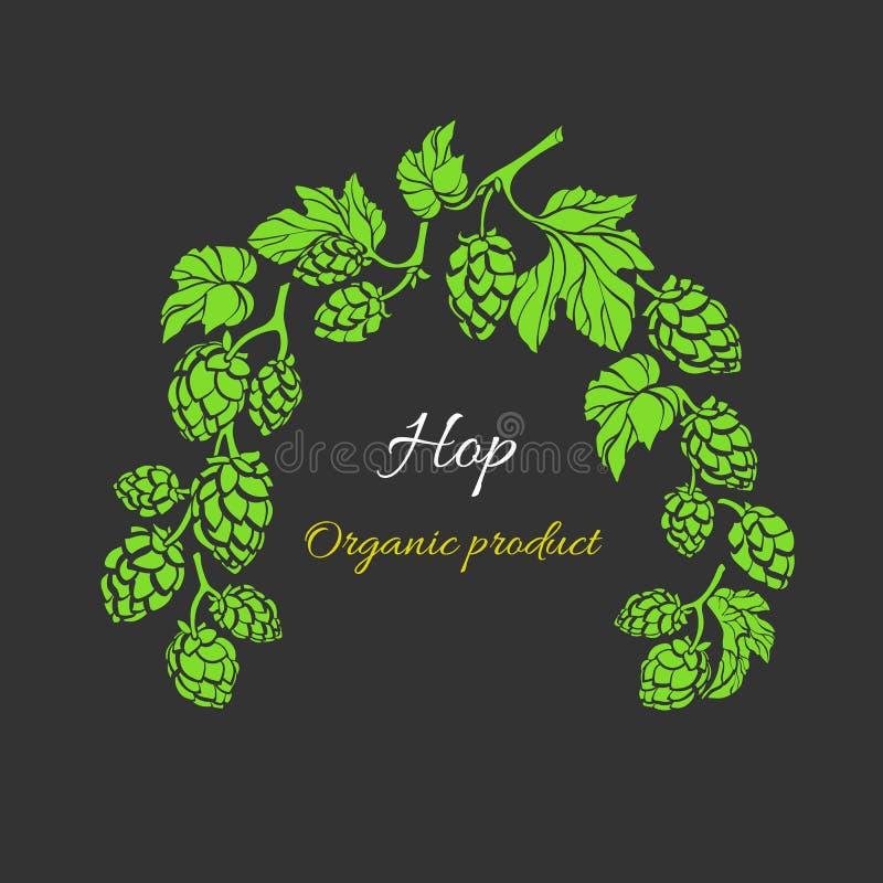Descripteur de vecteur Branche d'houblon Boisson naturelle, bière Bio cadre, modèle de fines herbes illustration libre de droits