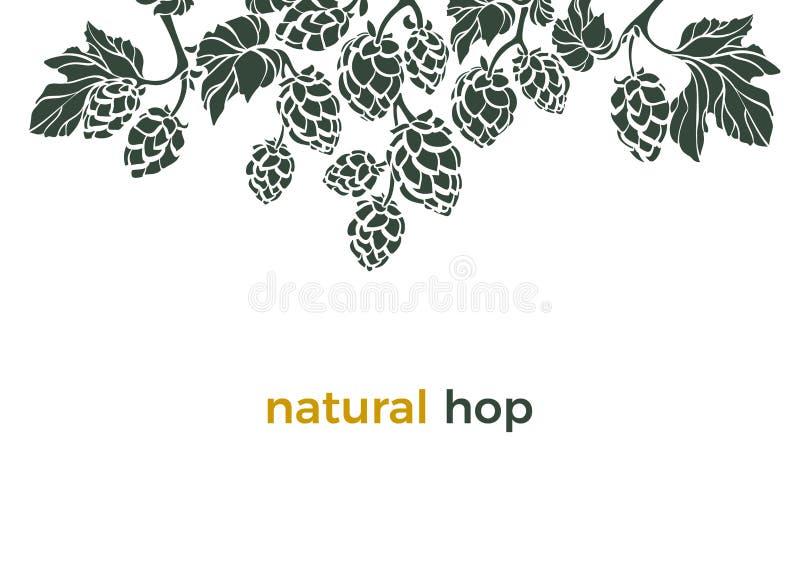 Descripteur de vecteur Houblon naturel Fronti?re d'art illustration stock