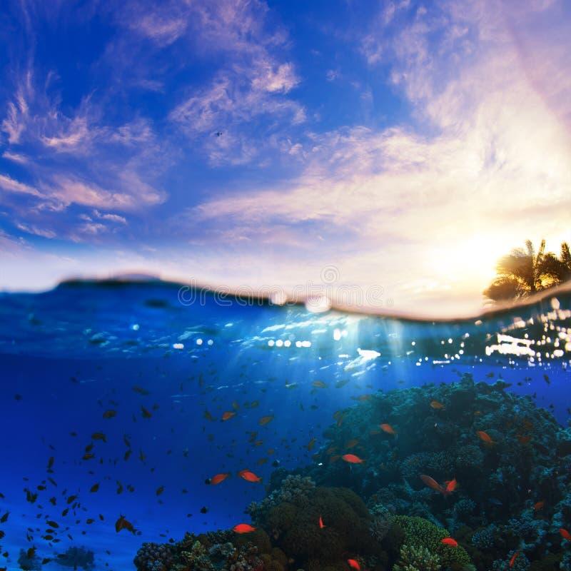 Descripteur humide de coucher du soleil sous-marin de Splitted photographie stock libre de droits