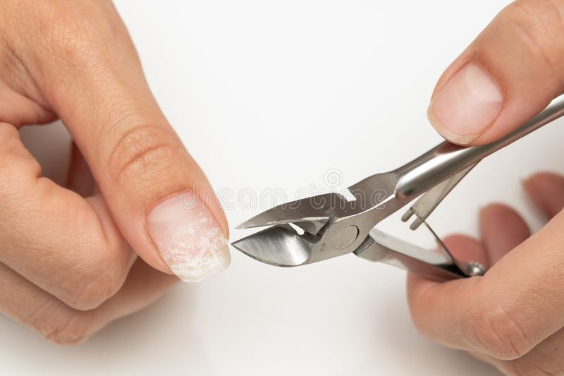 Hardware removal of the old shellac from the nails in the salon by the master. Description: hardware removal of the old shellac from the nails in the salon by royalty free stock photography