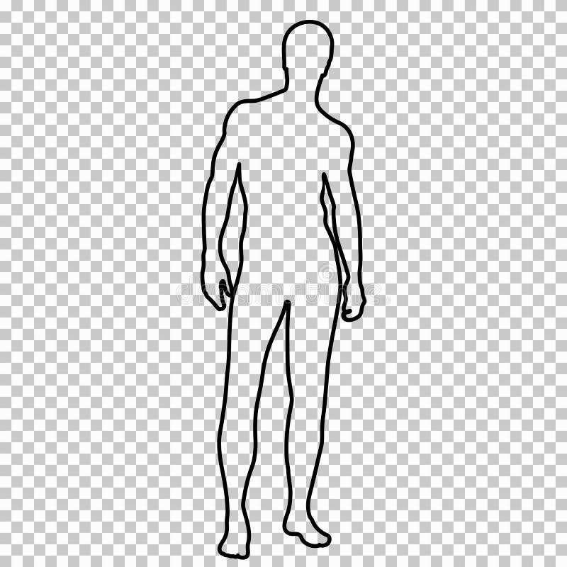 Descriva la figura che l'uomo nudo integrale con bei sport calcola, contorni l'atleta muscolare maschio del ritratto sopra royalty illustrazione gratis