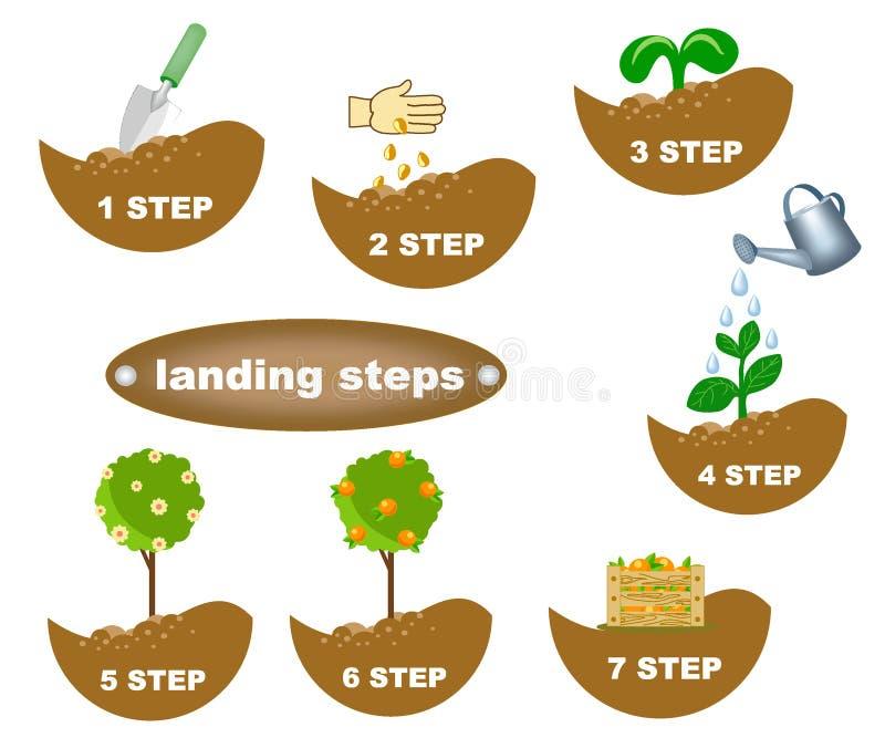 Descrizione di piantatura dei punti royalty illustrazione gratis