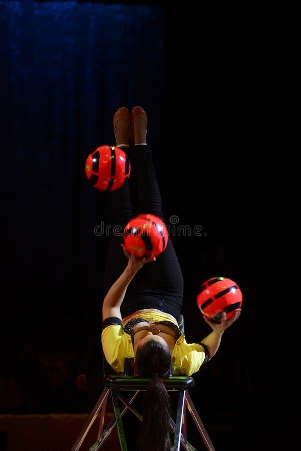 Desempenho ginástico, artista do circo, entretenimento imagem de stock royalty free