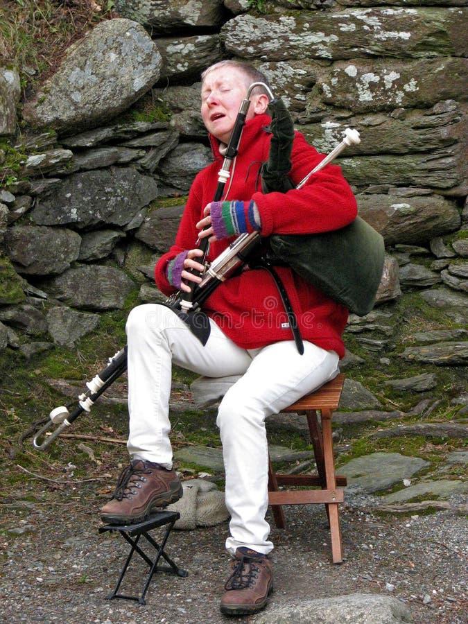 Desempenho irlandês da gaita de fole foto de stock royalty free